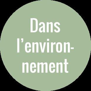 Dans l'environnement
